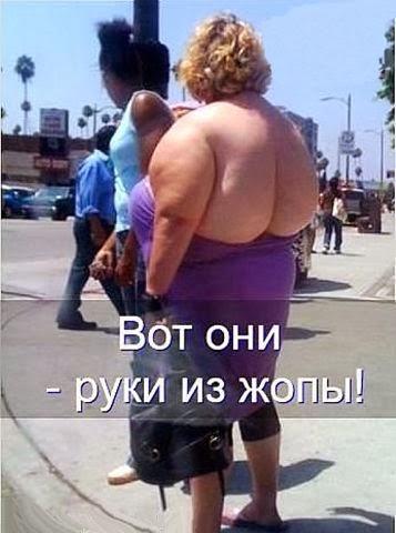 zhopi-ulibayutsya