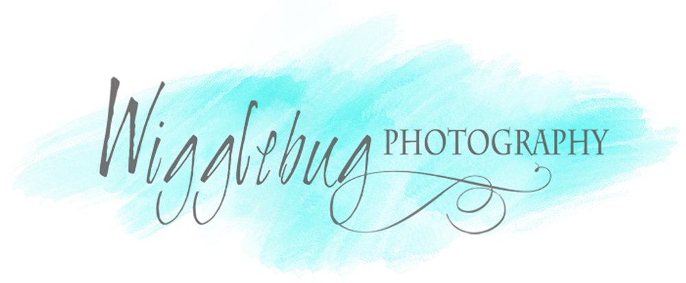 Wigglebug Photography | Newborn, Maternity, Family Photographer in DeKalb Sycamore Geneva, IL