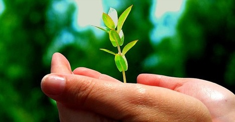 issues concerns and challenges in environmental Environmental issues  it helps us create smarter technologies that respond to how we use them and adjust themselves to reduce their environmental impact,.
