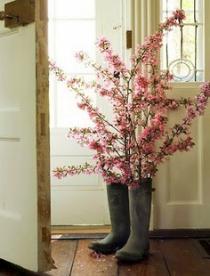 awesome pink blooming branches in wellingtons