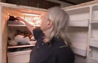 women who keep a dead cat in the fridge