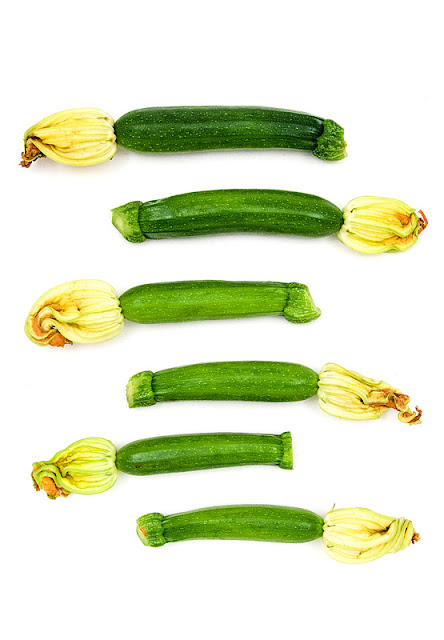 Young zucchini ladder with flowers