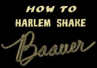 Lirik Lagu Baauer Harlem Shake