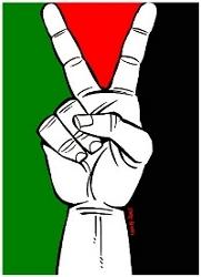 أنا فلسطين