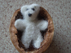 Teddy in a walnut shell