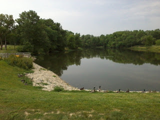 Photo of lake taken at park in Mason, Ohio during the summer. Ducks are present in the foreground.