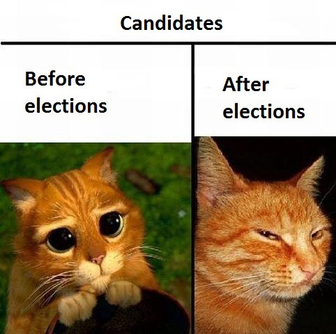 Candidates - Before And After Elections