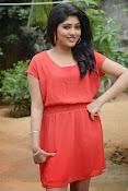 Samyuktha Hornad Glam pics-thumbnail-18