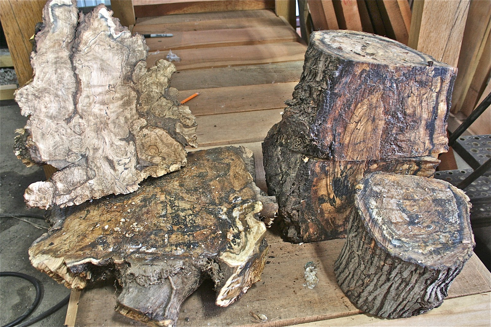 Spalted Maple Wood ~ Lumber logs spalted wood