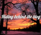 Hiding Behind The Blog