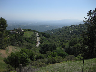 View to the east from Ridge Winery: Montebello Road, hazy valley, and distant hills.