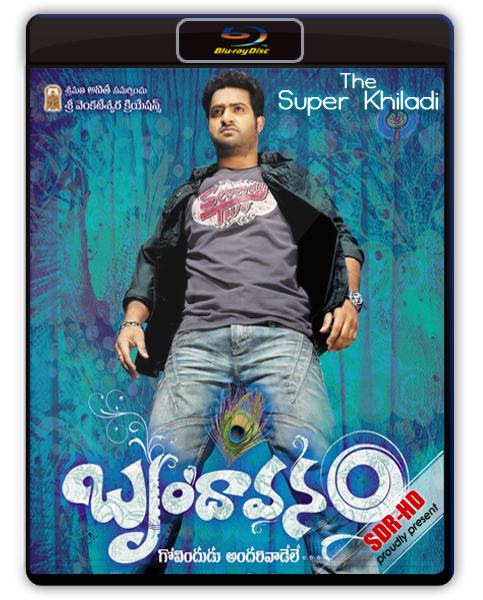 Brindavanam The Super Khiladi 2010 Hindi Dubbed BRRip 400mb