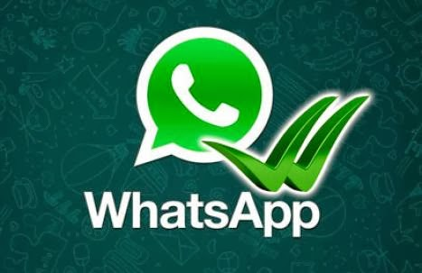CONTACTANOS GRATIS WhatsApp    FREE CONTACT WhatsApp +660874694613 (GEMMA)   +66874693808 (EDU)