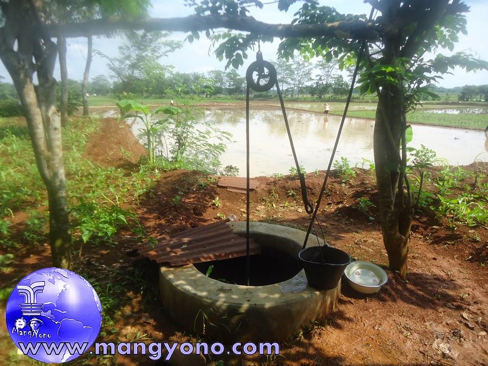 Sumur timba di Tegalsungsang / Kebun Keluarga