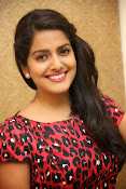 Vishaka singh at rowdy fellow event-thumbnail-3