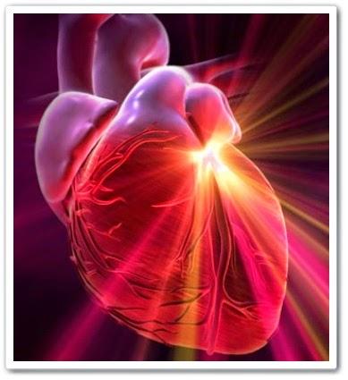 видео онлайн Упражнения для сердечно-сосудистой системы