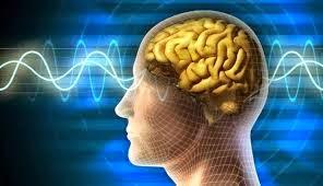 otak mudah mengingat atau menghafal dengan baik