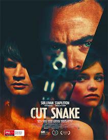 descargar JCut Snake gratis, Cut Snake online