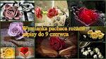 Wymianka pachnąca różami
