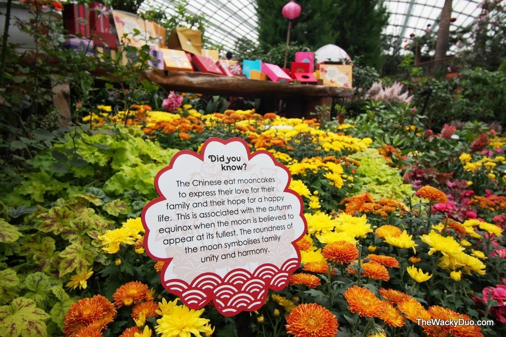 Garden By The Bay Flower Festival mid autumn festival @ gardensthe bay | the wacky duo