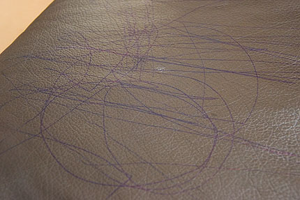 Ballpoint Pen Leather Couch8