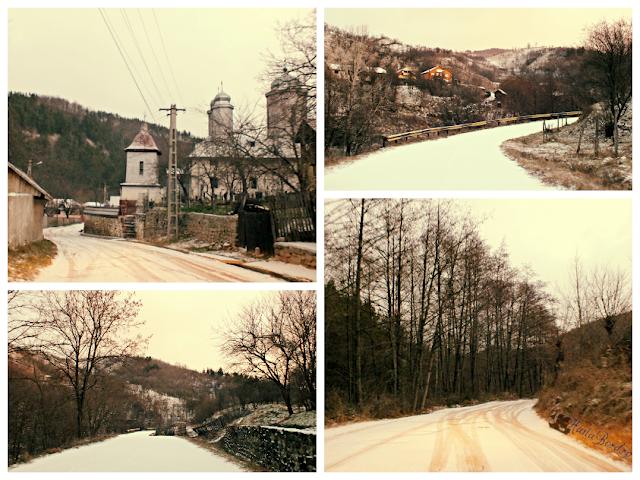 drum iarna muntii buzaului
