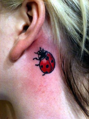 Ladybug Tattoos 1 Ladybug Tattoos 2 Ladybug Tattoos 3 Ladybug Tattoos