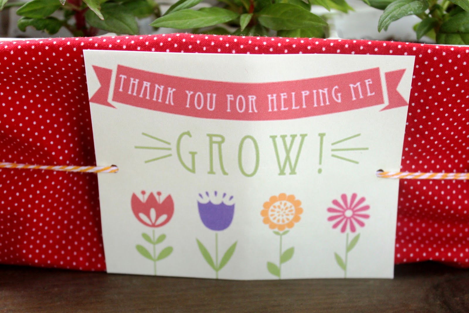 This is a graphic of Mesmerizing Thank You for Helping Us Grow Printable