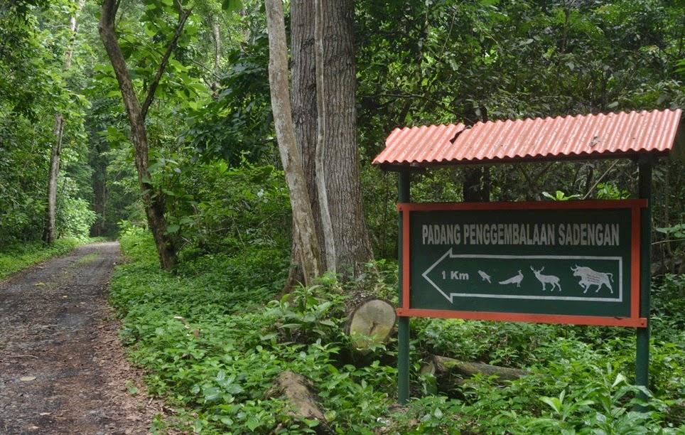 Taman Nasional Alas Purwo, Banyuwangi.