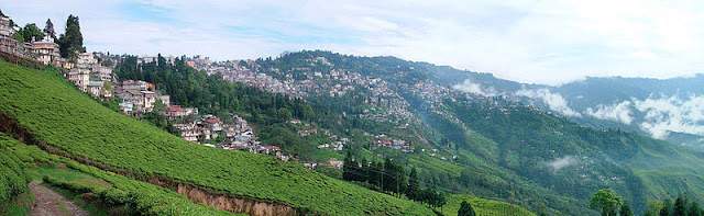 darjeeling sight seeing