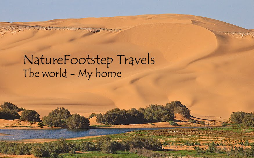NatureFootsteps Resor / Travels