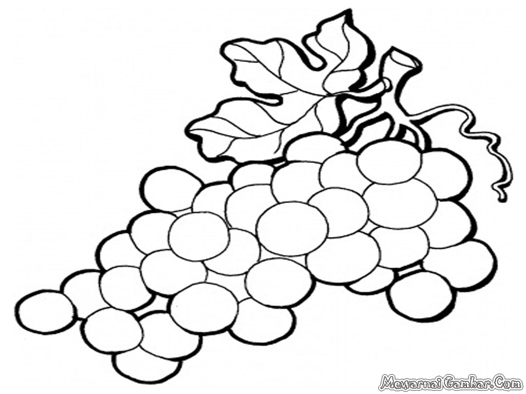 Image Result For Coloring Page Rumah