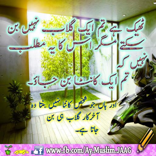 JO Shaks Kantaa Nhii Banta wo Bil-Akhir Guab Hi Ban Jata Ha - Urdu Quotations