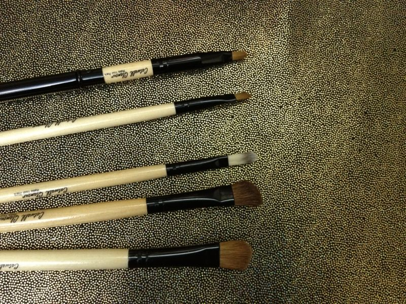 Catwalk-Glamour Luxury Sable 8 Makeup Brush Set reivew