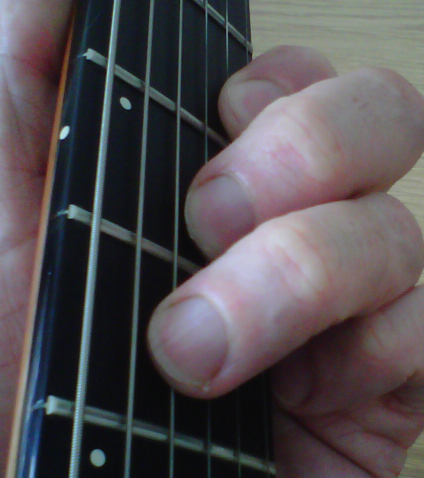 A New Guitar Chord Every Day F Guitar Chord Beginners Guitar Chords