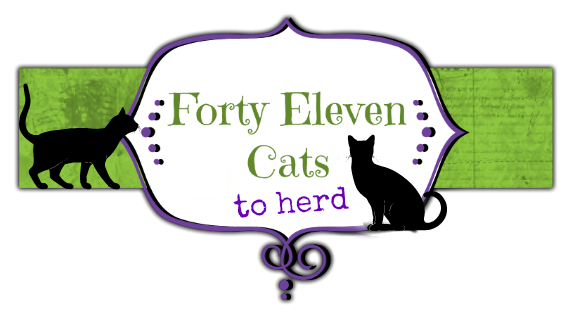 Forty Eleven Cats