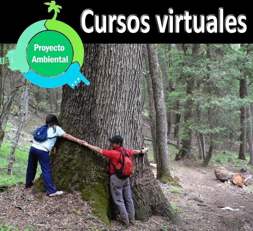 Cursos Virtuales Ambientales