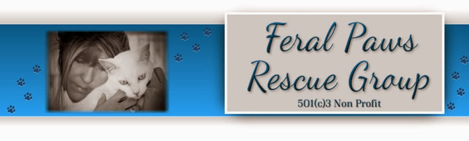 Feral Paws Rescue Group