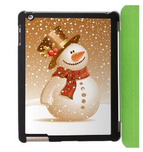 cheap ipad case
