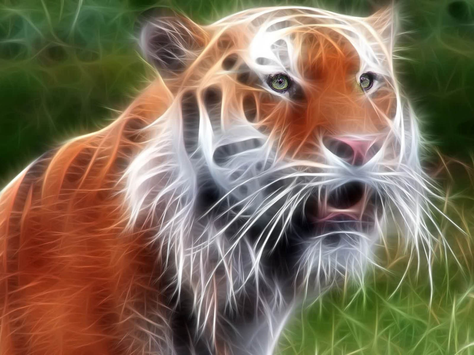 224 White <b>Tiger</b> HD <b>Wallpapers</b> | <b>Backgrounds</b> - <b>Wallpaper</b> Abyss