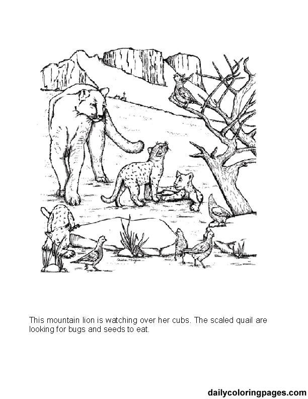Zoo scene coloring pages zoo scene coloring pages page 1 coloring - Gallery For Gt Mountain Coloring Pages
