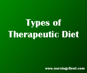 types of therapeutic diets
