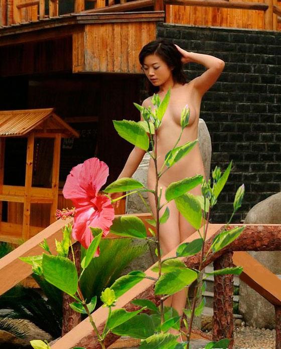Người đẹp đầy sức sống bên hoa dâm bụt. Ảnh : Sao Việt