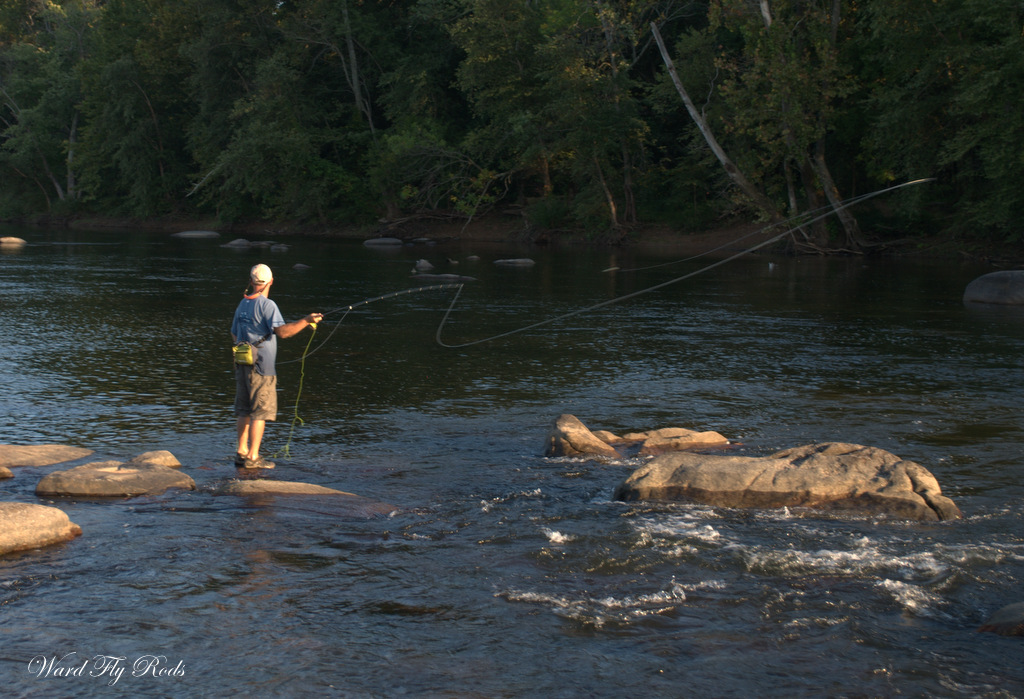 ward fly rods pony pasture fly fishing in richmond va