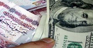 سعر صرف الدولار الأمريكي، اليوم الاثنين 12/8/2013، أمام الجنيه المصري