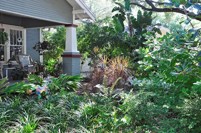 Front Yard Landscaping Under Trees : Bay friendly landscaping made in the shade