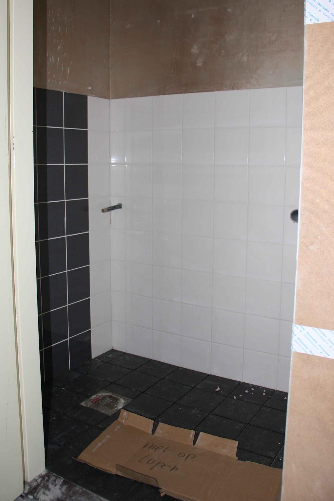 Geen renovatie 39 blog - Wc muur tegel ...