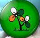 Trinamool Congress's Symbol
