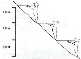 Teknik menata lahan miring metode SALT