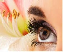 """New Look, New Confident & New Days."" Natural Mink Eyelash Extension ONLY $100"